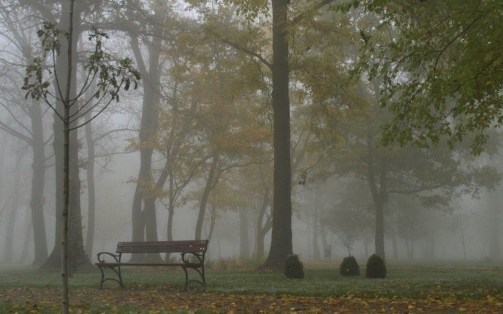Park Kleszczewo